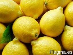 Fresh lemon - photo 1