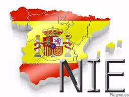 Получение индивидуального номера иностранца (NIE)