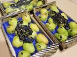 Продаем груши из Испании - фото 2