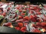 Продаем клубнику из Испании - фото 4