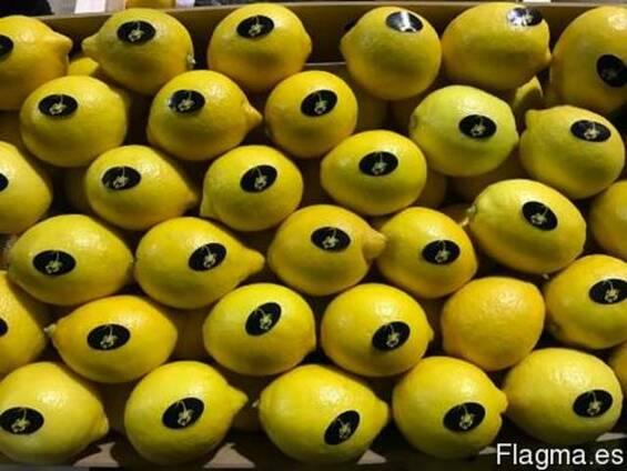 Продаем лимон 2014