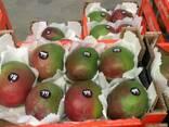 Продаем манго из Испании - фото 1