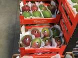 Продаем манго из Испании - фото 2