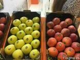 Продаем яблоки из Испании - фото 5