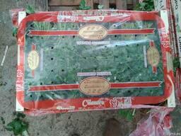 Продаем зелень - фото 2