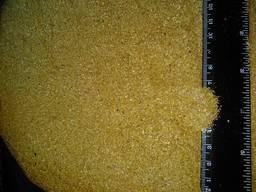 DDGS corn