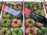 Ecoinver - Испанский Производитель Экспортер свежих овощей - фото 7