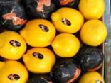 Фрукты и овощи из Испании. Прямые поставки - фото 3
