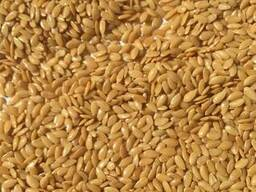 Manufacturer sells: golden confectionary flax