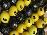Продаем лимон 2014 - фото 3