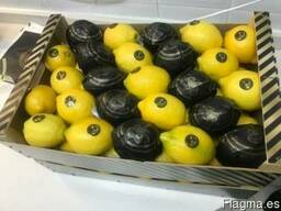 Продаем лимон 2014 - фото 4