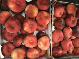 Продаем парагвайский персик - photo 3
