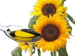 Unrefined sunflower oil high oleic in bulk